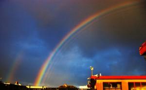 Regenboog door Mike Nicholson